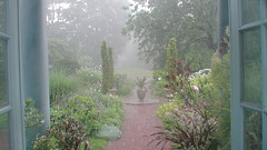 098 Rain At Wave Hill Garden (thomas390) Tags: bahe yamur