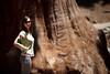 Bean & Tree ('SeraphimC) Tags: california 4thofjuly independenceday sequoianationalpark centralvalley