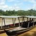 3h de barco ate a selva malaia