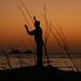 Pescador brasileiro. Segundo ele: Dos bao!