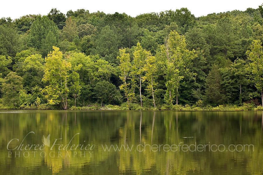 SH Lake Reflections 2