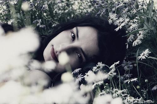 Lavender dream - Bhumika.B