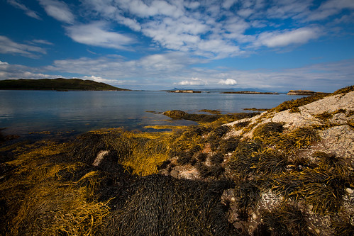 The Rhu of Arisaig