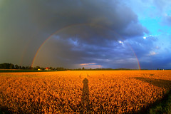 Rainbow (herbraab) Tags: rain clouds rainbow cornfield day fisheye atmosphericoptics epod peleng8mmf35 atmosphericphenomena canoneos550d