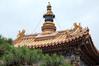 _DSC7893 (durr-architect) Tags: china school court temple peace buddhist beijing buddhism prince palace monastery harmony lama tibetan han dynasty emperor qing kangxi yonghegong lamasery monasteries yongzheng eunuchs