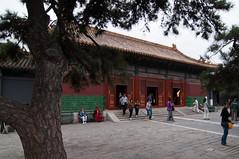 _DSC7831 (durr-architect) Tags: china school court temple peace buddhist beijing buddhism prince palace monastery harmony lama tibetan han dynasty emperor qing kangxi yonghegong lamasery monasteries yongzheng eunuchs