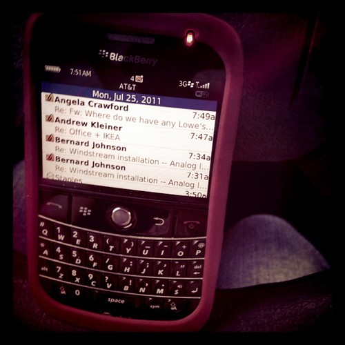 Monday: the blackberry