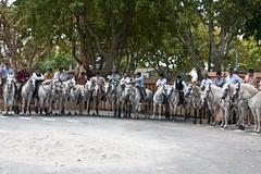 Courses, abrivados, encierros, roussatailles... site fotos 5975043808_64236c9d8b_m