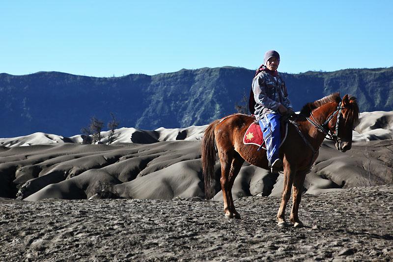 Horseman IMG_0286-w