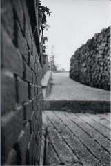 ENTRANCE (skech82) Tags: wood brick film wall woods focus bokeh natura outoffocus ilford yashica ingresso legno woodshed sfocato pellicola muretto legnaia mattone skech82