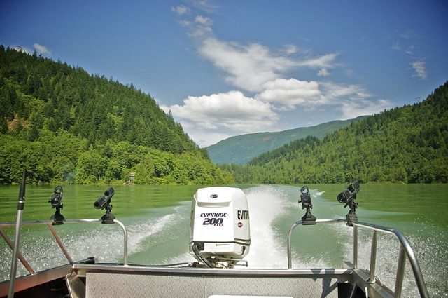 Harrison River Eco Tour