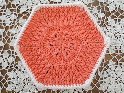 tangerine dishcloth
