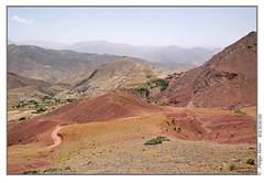 Maroc_haut-atlas_1_demnate_Tiz-n-outfi_el-keaa-des-m-gouna_6986 (Philippe Mriot) Tags: n el des m gouna morocco maroc tiz outfi demnate keaa marochautatlas