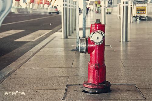 Ahora me encontré un hidrante en el aeropuerto!