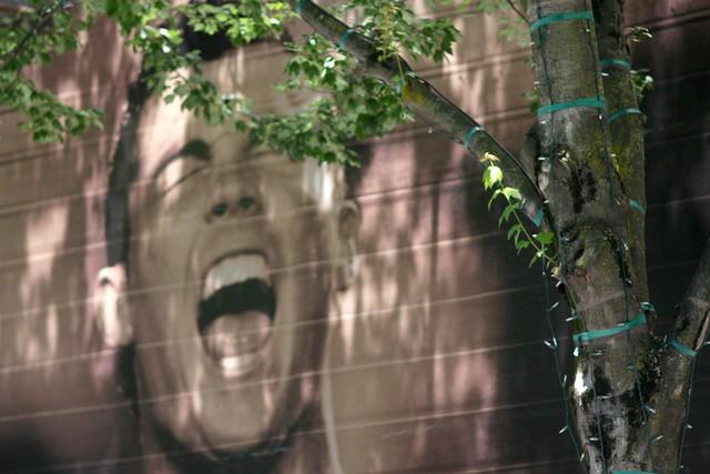 screamer, sw morrison