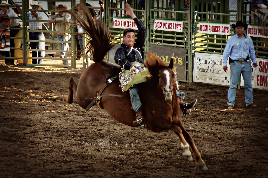 2011rodeo6