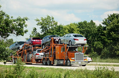 Orange Peterbilt hauling cars (myhotrod9) Tags: truck semi pete conventional trucking peterbilt 18wheeler tractortrailer bigrig class8 largecar carhauler