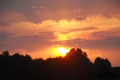 Sunset Touching the Tree Tops (ZVMII) Tags: nc sunsets greensboro summerevenings