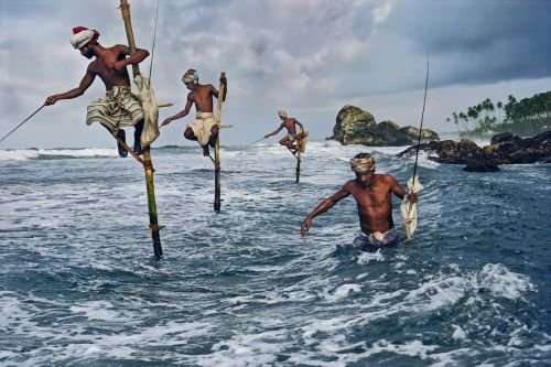 Fishing in Srilanka