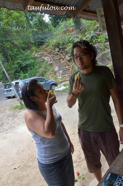 balik pulau durian (21)