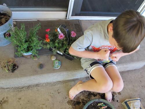 Making Dino Gardens #2