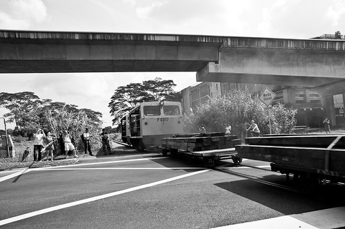 Photographers witnessing train crossing Chua Chu Kang level crossing