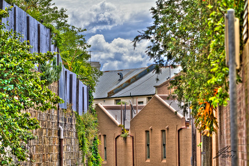 Street by Glen Adamson