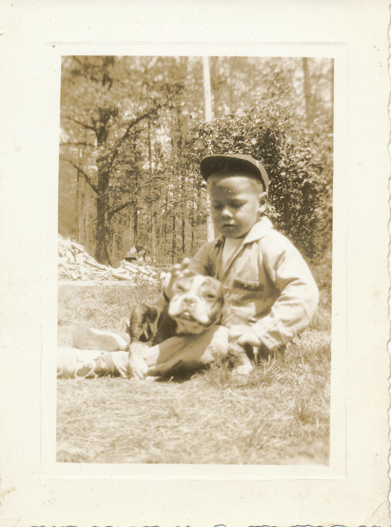 Young boy with a bull terrier puppy