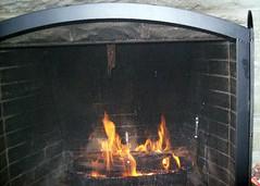 burns 269