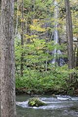 奥入瀬の滝(1)