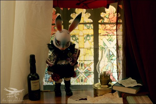 Bunny in the library II