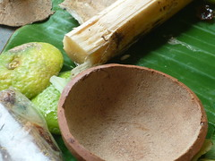 P1160279 (mitana2010) Tags: food chinese durgapuja bengali