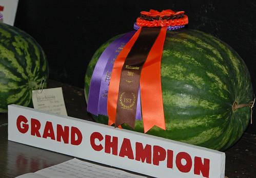 grand champion melon!.jpg
