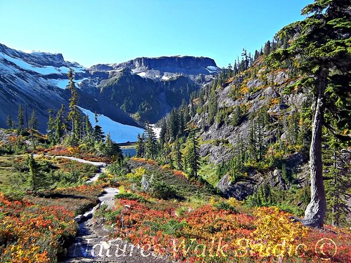 10.25 Trail to Bagley Lake