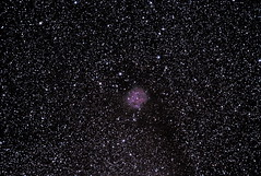 Nebulosa de Cocoon  IC 5146 (luis miguel33) Tags: Astrometrydotnet:status=solved Astrometrydotnet:version=14400 Astrometrydotnet:id=alpha20111001451951