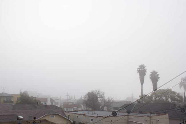 foggy LA morning