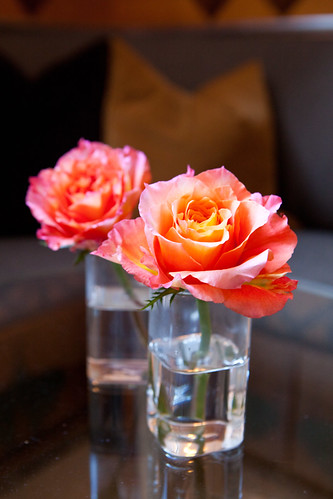 Roses at the lounge