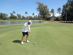 Turtle Bay Colf Course 146