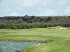 Turtle Bay Colf Course 255