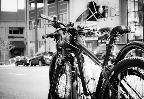 Bikes in Washington B/W
