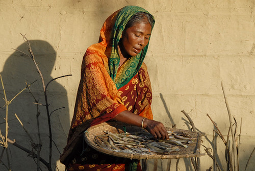 Preparing dried fish, Bangladesh. Photo by WorldFish, 2007