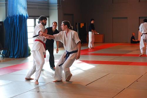6299951812 1b7415b259 London & Hove Shodokan Aikido Festival 2011