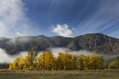Fall Explosion (Ryan Stemkoski) Tags: trees mountains fall winthrop bluesky fields sunmountainlodge
