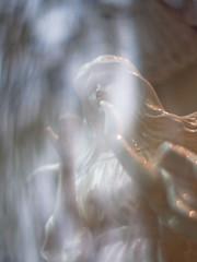 angel in the window (ymk.sato) Tags: 50mm tokyo bokeh f14 kern rx ep1 macroswitar cmount