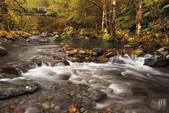 French Creek (Ian Sane) Tags: road bridge autumn lake fall nature colors leaves rain oregon creek french ian photography stream long exposure detroit images reservoir brook wilderness outlet sane