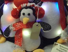 Flashing Penguins (Tony Worrall Foto) Tags: christmas xmas uk england festive fun lights penguins photo northwest image flash seasonal stock buy preston barton lit items sell decorate norh prestonian bartongrangegardencentre 2011tonyworrall