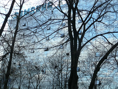 Post-communism, Chisinau, Moldova (Ferry Vermeer) Tags: travel trees winter tree glass silhouette sign architecture ads silhouettes samsung advertisement february chisinau postcommunism moldavia travelphotography glassfacade chiinu moldawien moldavija modawia glassarchitecture   moldavien moldavie facadearchitecture postsocialism kishinau moldavi  kiszyniw  kischinew kichinev moldvia kischinau moldavsko advertisementsign  kiinev moldovya   kishinjov postcommunistarchitecture   postsocialistcity postsocialistarchitecture ferryvermeer keshenev knw kiineu kiinv kiieva kiiniovas kiinjev  kiiov kiinyov kisinyov kisjen kisnovio  quichinau quixineve moldva moldavja moldvie  moa postcommunistcity samsungavon