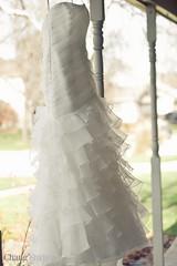 Chang2 Studios-034.jpg (leeann3984) Tags: wedding usa illinois 2011 bubis