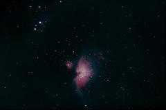 Orion Nebula (mike.palic) Tags:
