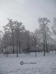 Neve (Sara Dabrilli) Tags: travel family winter wedding party italy white snow cold japan sara italia famiglia neve festa venezia bianco freddo viaggio matrimonio inverso dabrilli